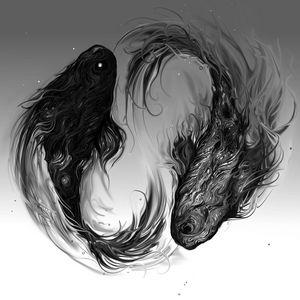 Yin and Yang Koi Fish