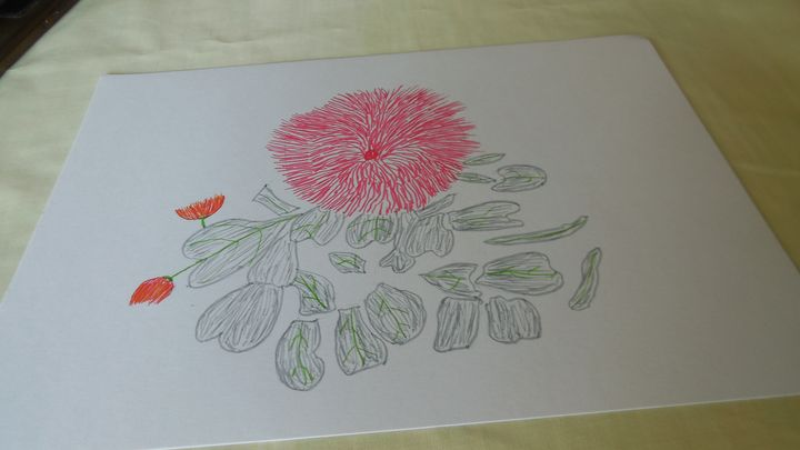 Lotus Flower - QuirkyBylinesArt