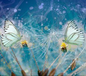 Blue spring fantasy
