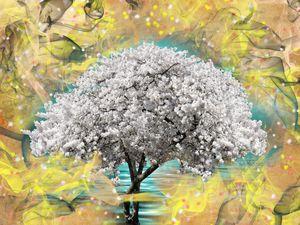 Cherry blossom tree fantasy
