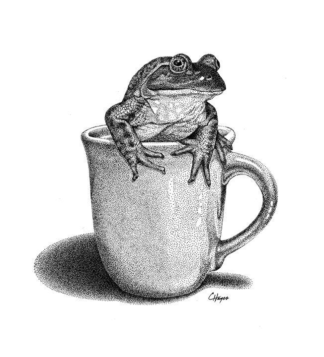 Bullfrog in Cup - Colin Hayes Art