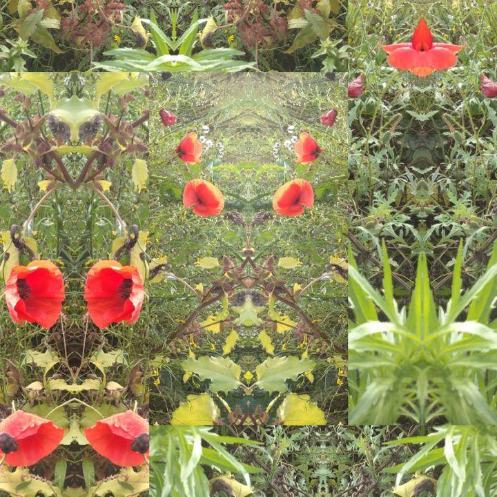Made by nature 9 - poppin - Reka Kiss