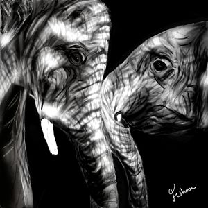 Elephants Digital Painting