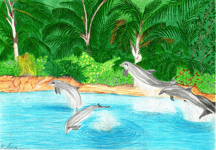 Discovery Cove All Stars - KFMConcepts Art Gallery