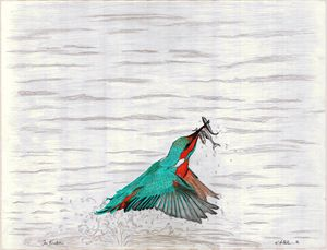 The Kingfisher - KFMConcepts Art Gallery