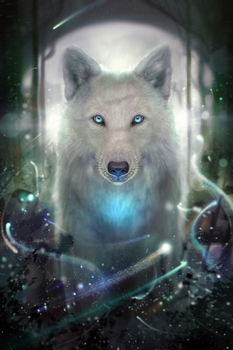 Lonewhite wolf - andre Illustration