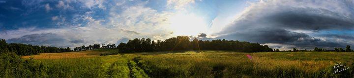 Sunrise Farm Field - Chris Mathews | MCP Film.com