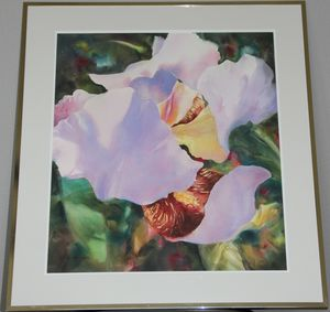 Iris Unfolding - Watercolor - Gard