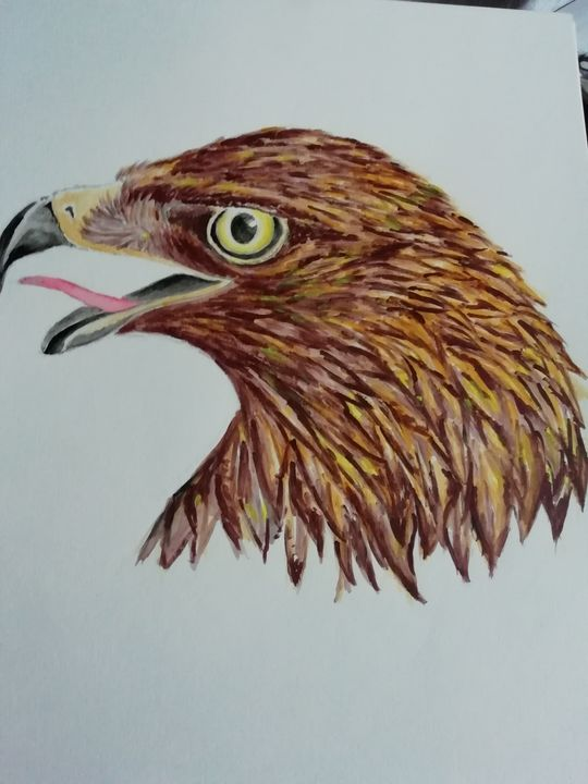 Golden Eagle - Dave Taylor art works