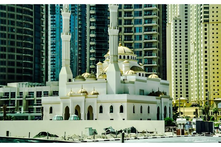 MOSQUE IN THE METROPOLIS - Lady Marie