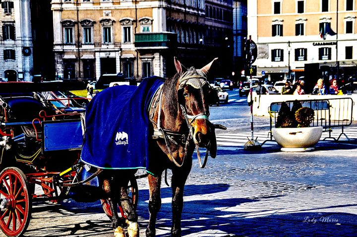 JOIN ME FOR A RIDE THROUGH ROME - Lady Marie