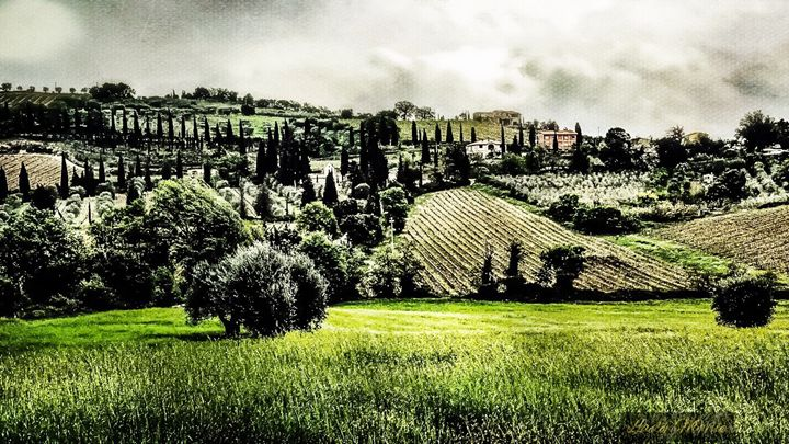 Hills of Tuscany - Lady Marie