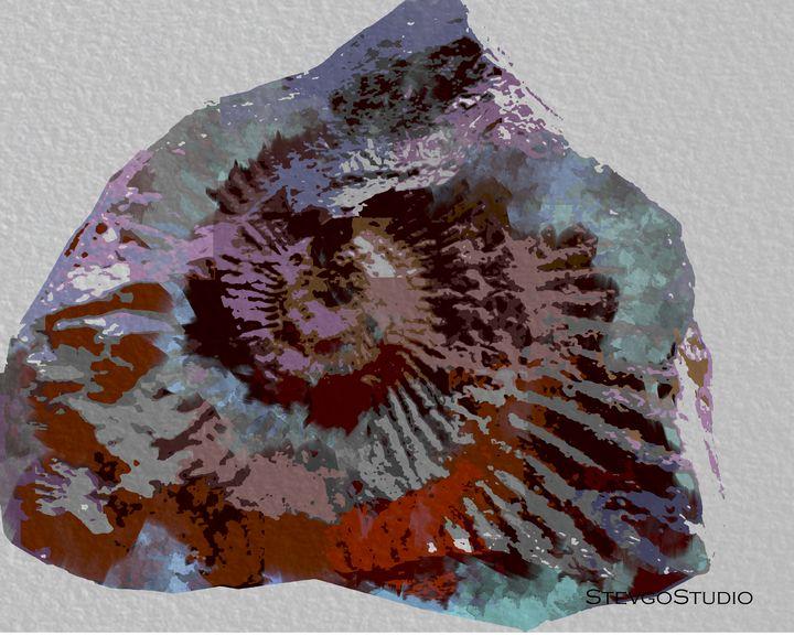 Fossil Stone A1171 - StevgoStudio