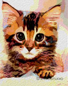 Cute Kitten A1292