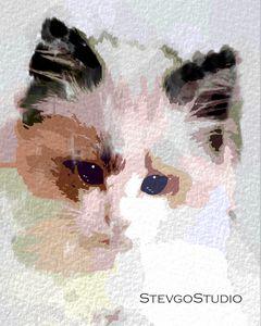 Cuddly Kitten A1295