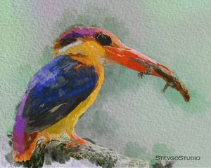 Beautiful Bird B02055