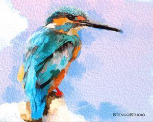 Colorful Bird B02056