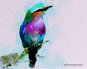 Beautiful Bird B02059
