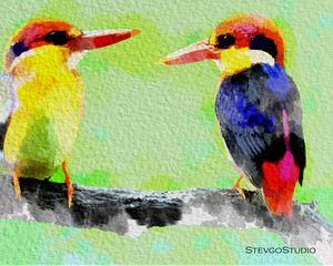 Beautiful Birds B02051