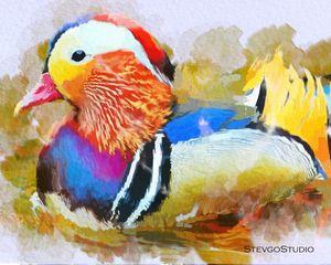Beautiful Birds B02053