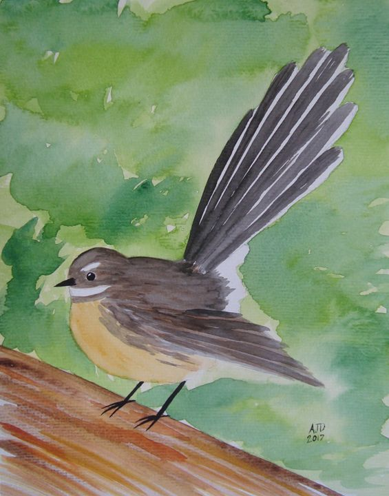Fantail on a picnic table - Adam Darlingford
