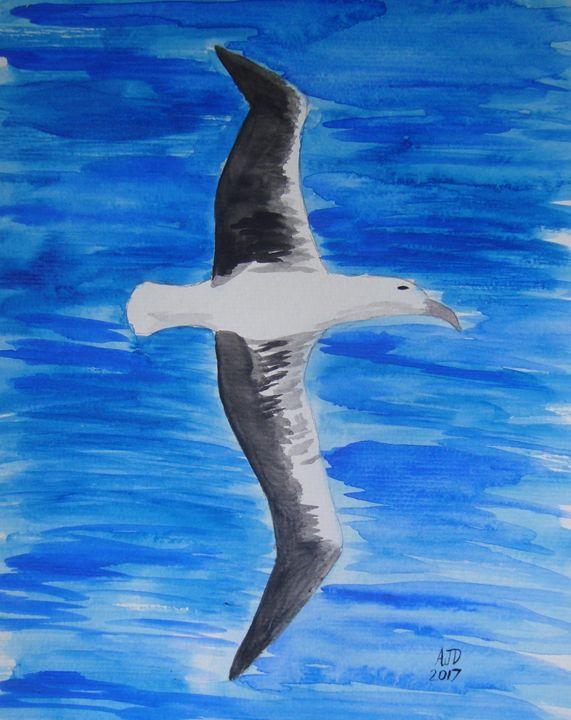 Southern Ocean Albatross - Adam Darlingford