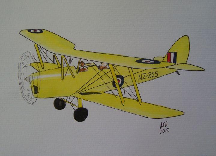RNZAF Tiger Moth - Adam Darlingford