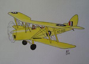 RNZAF Tiger Moth