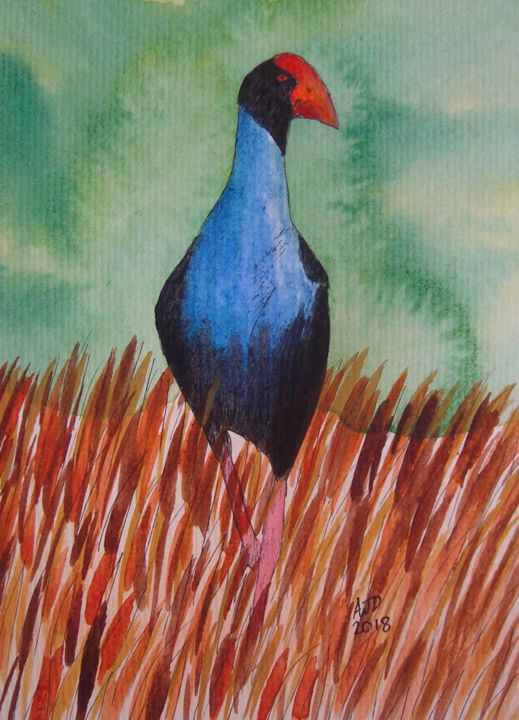 Pukeko in the grass (portrait) - Adam Darlingford
