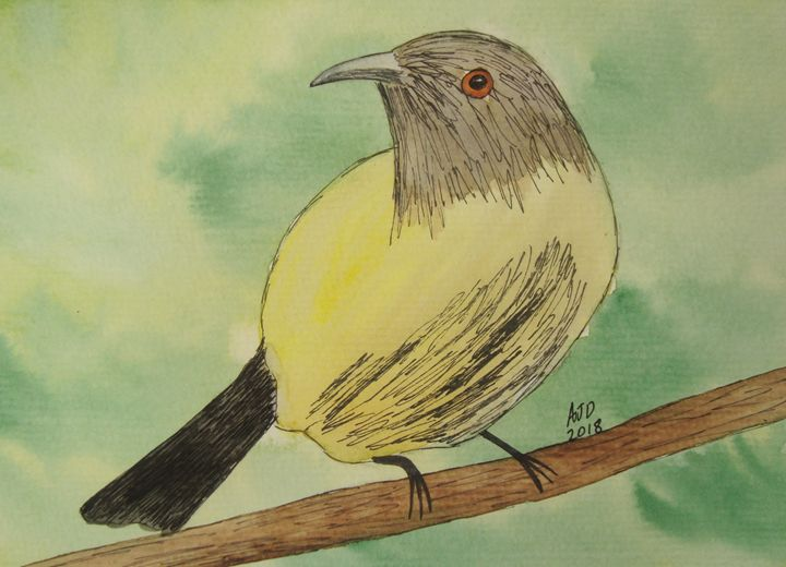 Bell Bird on a Branch - Adam Darlingford