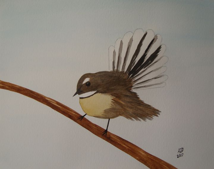 New Zealand fantail on a branch - Adam Darlingford