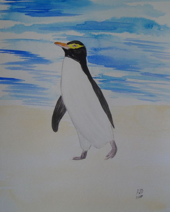 Lone yellow eyed penguin - Adam Darlingford