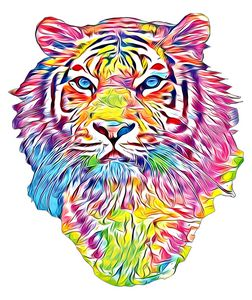 Tiger in color
