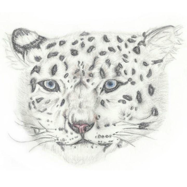 Snow Leopard Head - Bxri's Art