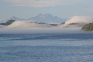 The Fog Rolls On
