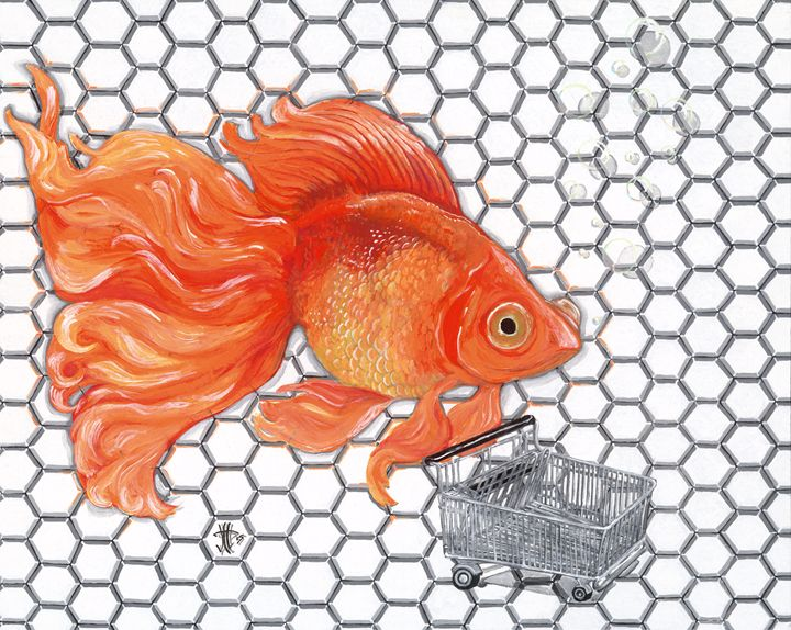 Attention Goldfish Shoppers - Jo Shmo Art