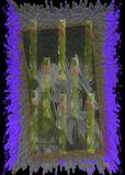 purple petla