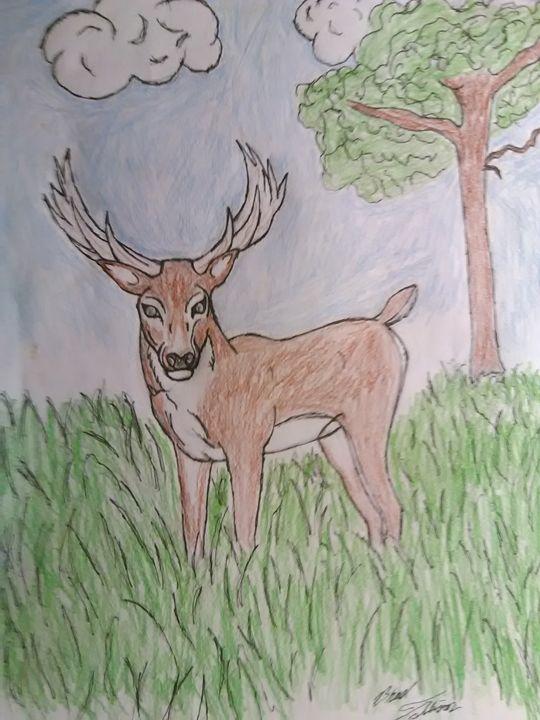 Buck - PITBULL