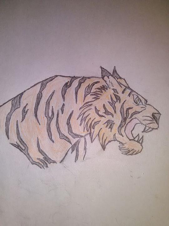 Tiger - PITBULL