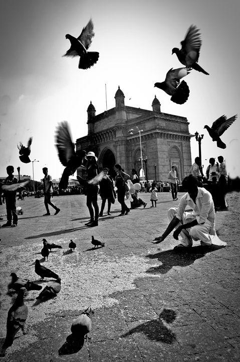 The streets of Mumbai - Starbug