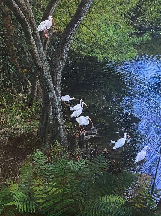 The ibis talking - Chucho