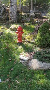 Wood Hydrant