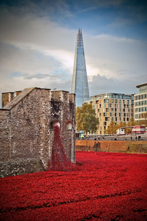 Tower of London Blood Swept Lands - Andy Evans Photos