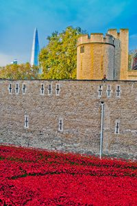 Tower of London Blood Swept Lands