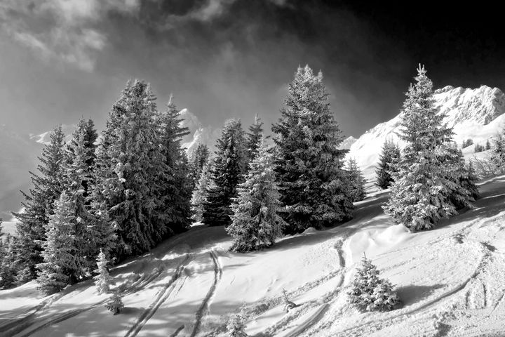 Courchevel 3 Valleys Alps France - Andy Evans Photos