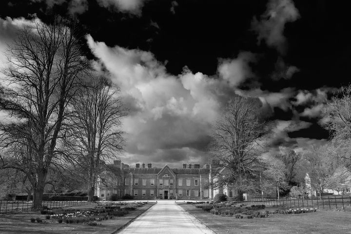 The Vyne Sherborne St John - Andy Evans Photos