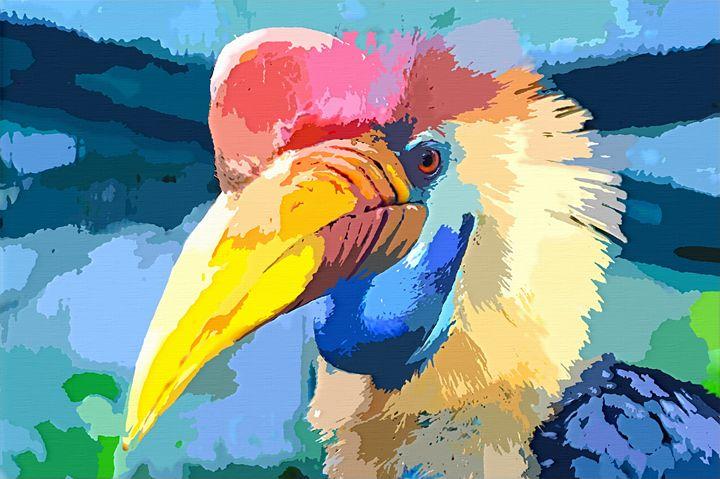 Colorful Hornbill Bird - Dori Marie