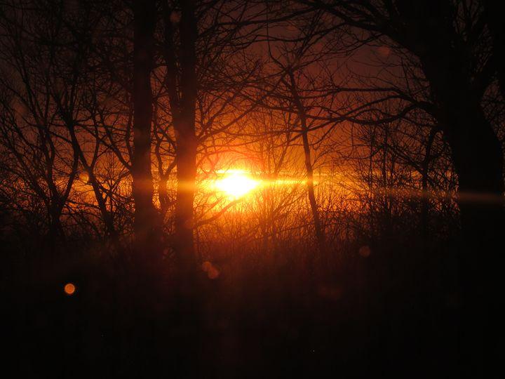Morning Glory - Stylo