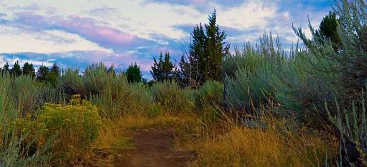 foot path - Nathan Olsen photography