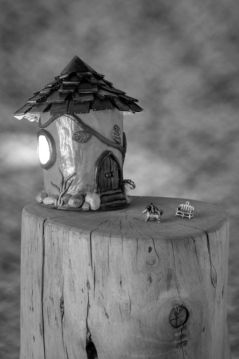 Toy house - Tommer Rissin